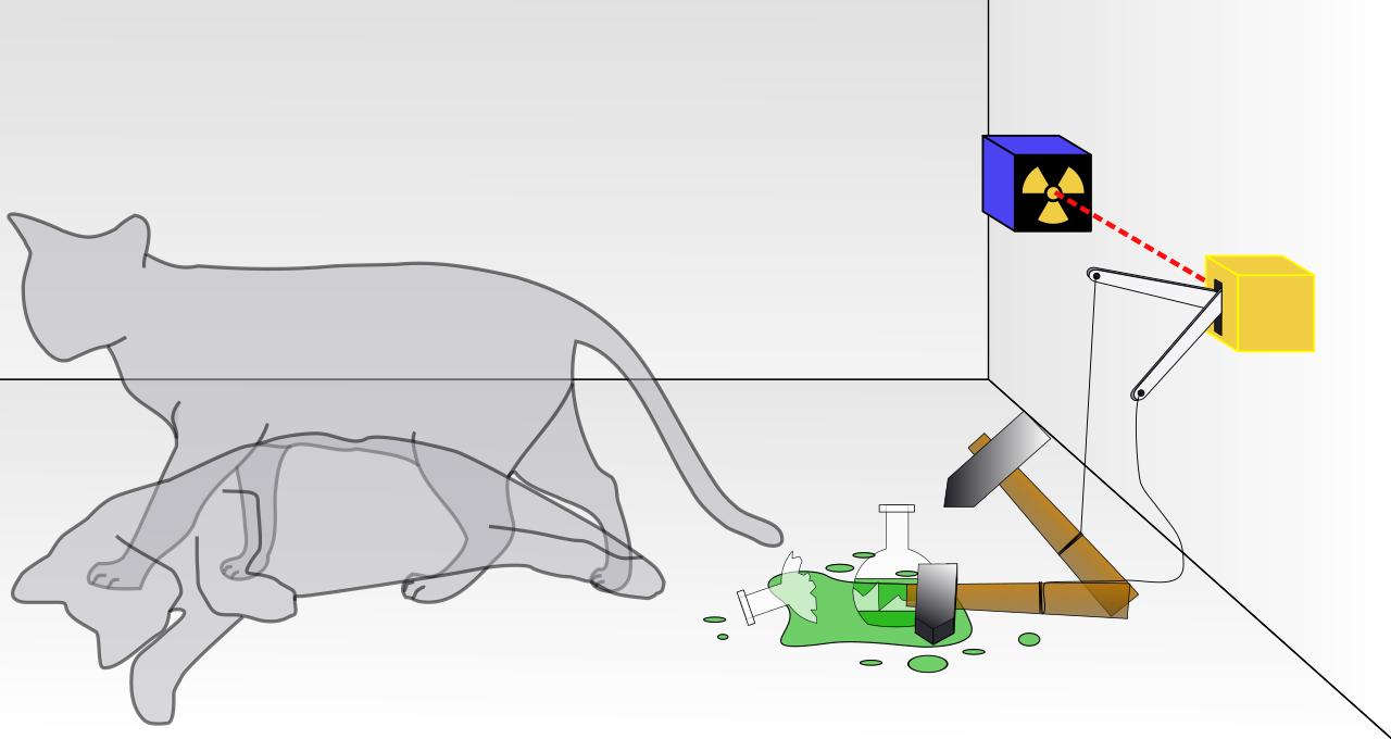 Schrodingers_cat experiment magis center