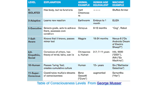 Table of Consciousness