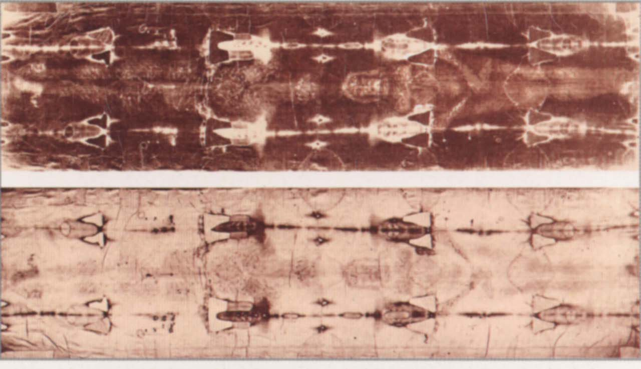 Verified Scientific Facts supporting the Authenticity of the Shroud of Turin